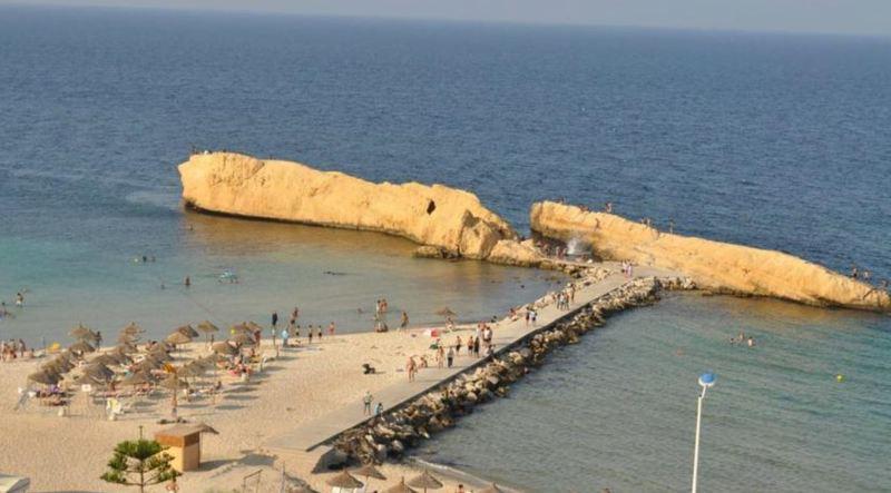 Delphin El Habib