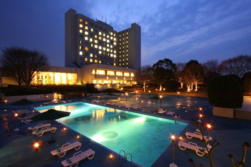 Pool International Garden Hotel Narita
