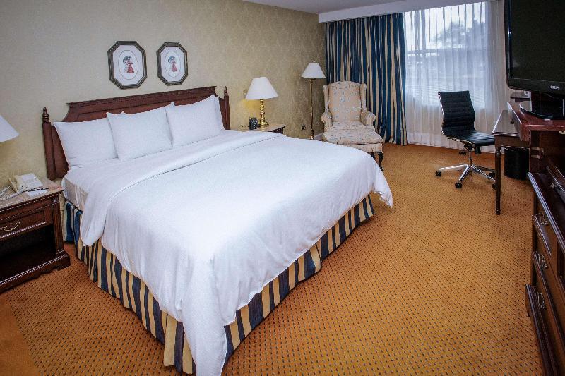 Room Hilton Princess Managua