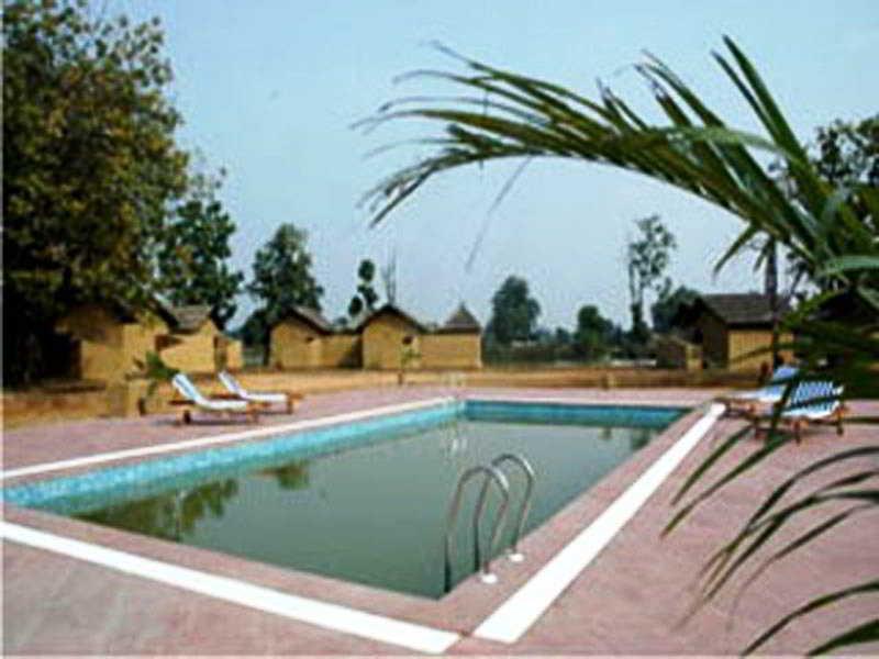 Pool Tiger Lagoon