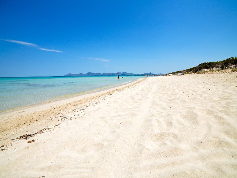 Beach Bq Sarah