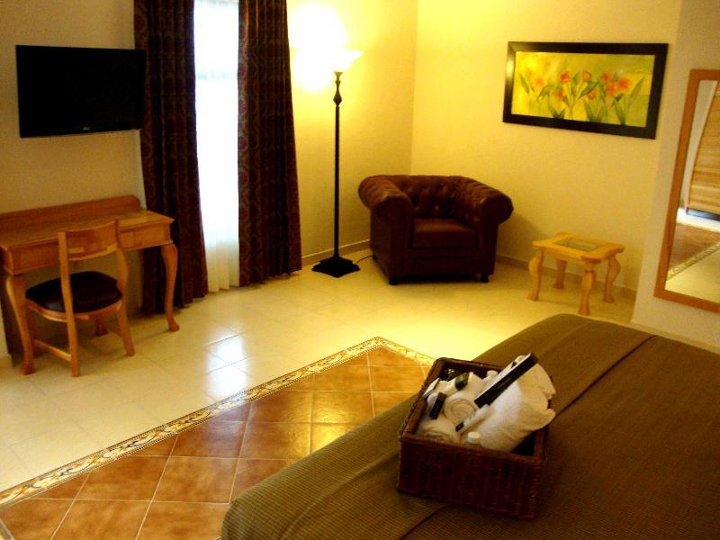Rio Queretaro - Room - 5