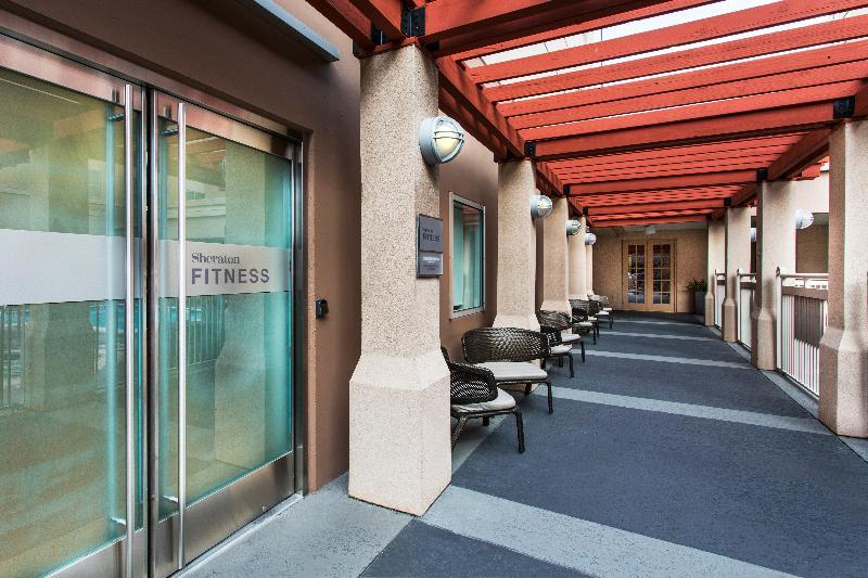 Sports and Entertainment Sheraton Suites Houston Near The Galleria