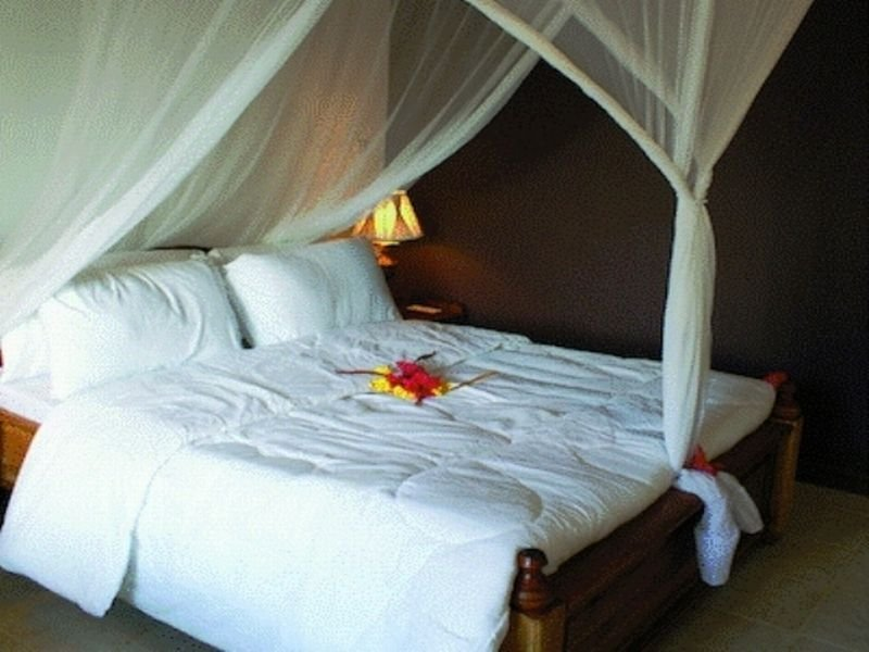 Room Nungwi Lodge