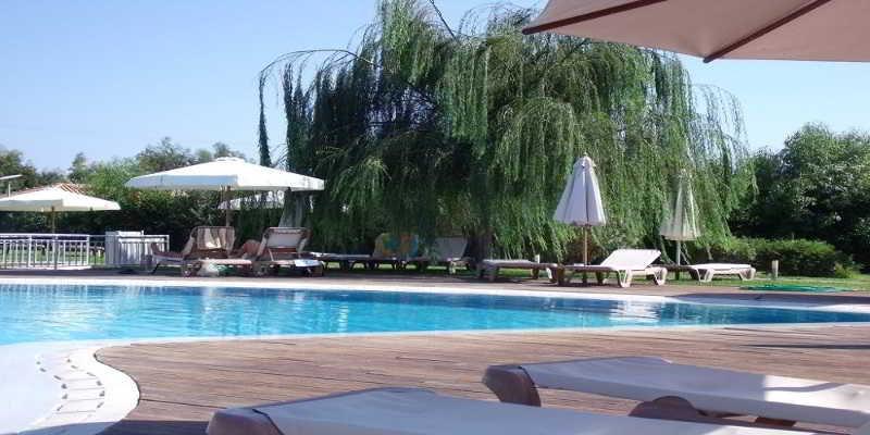 Pool Alfa Hotel