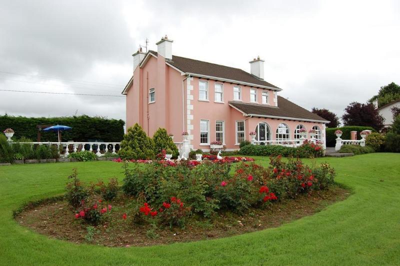 Ballingowan House - Hotel - 2