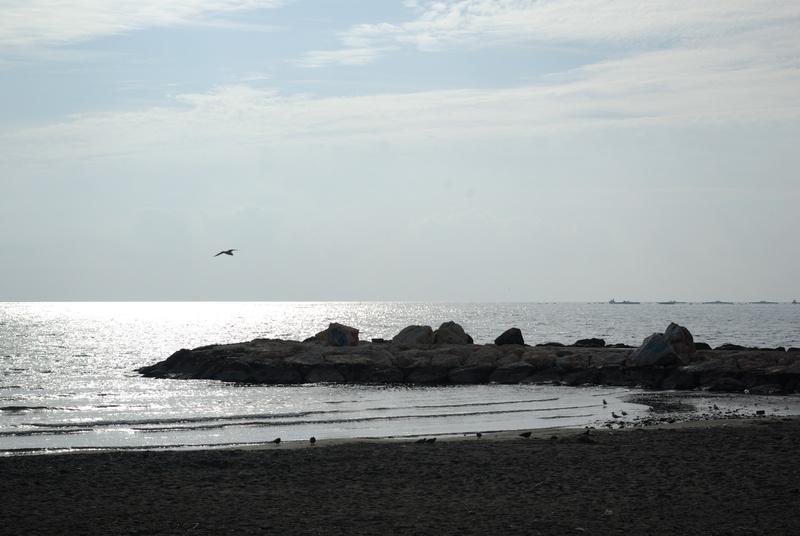 Beach Moscatel Hostal