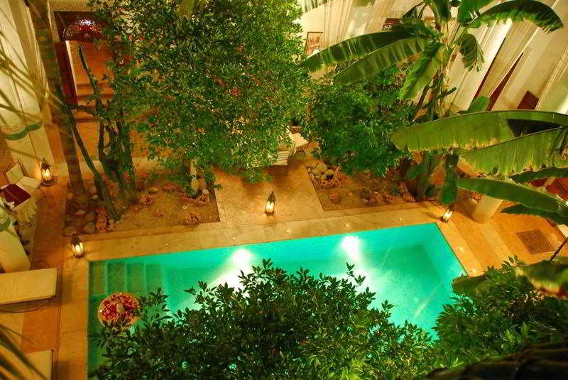 Sunshine Seacoast - Hotel - 9