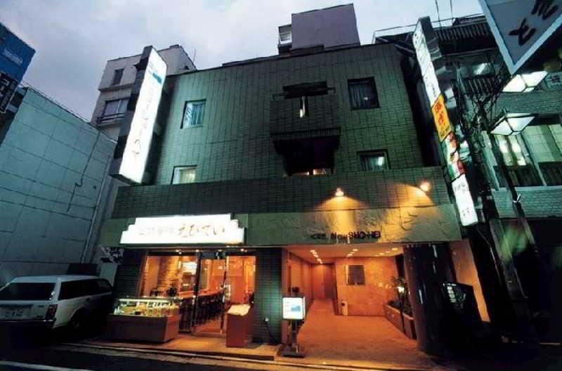 General view Hotel New Shohei