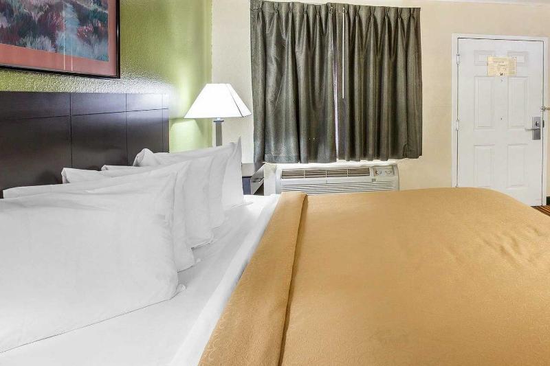 Quality Inn & Suites - Room - 1