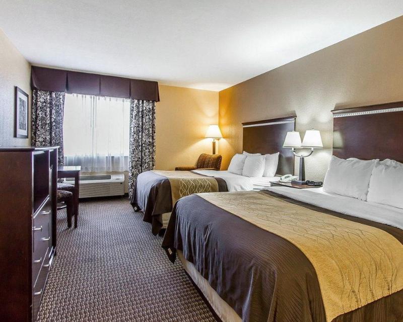 Comfort Inn & Suites - Hotel - 2