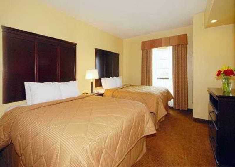 Room Comfort Inn Near Seaworld