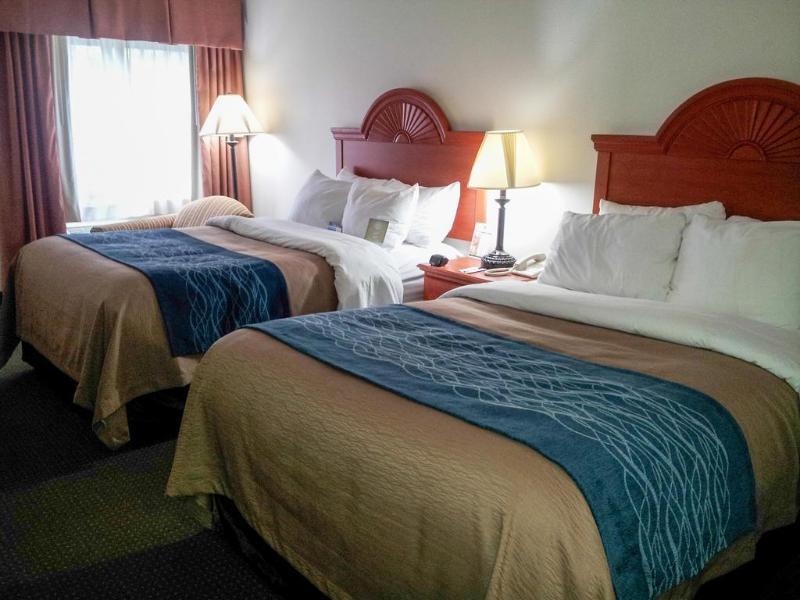 Comfort Inn - Hotel - 2