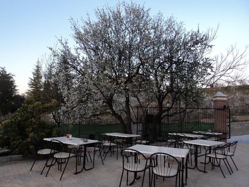 Hotel La Encina Centenaria - Terrace - 12