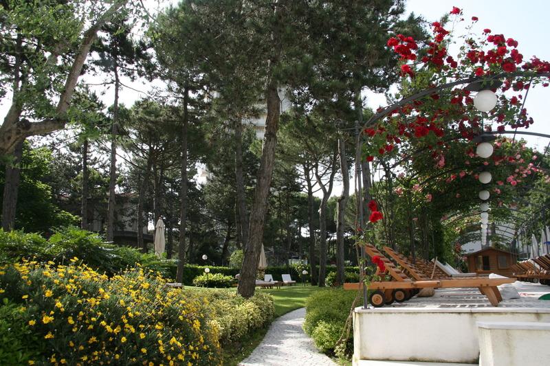 Terrace Greif