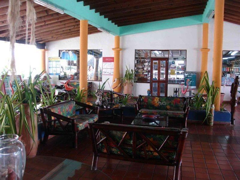 Tropical Refuge - Hotel - 1