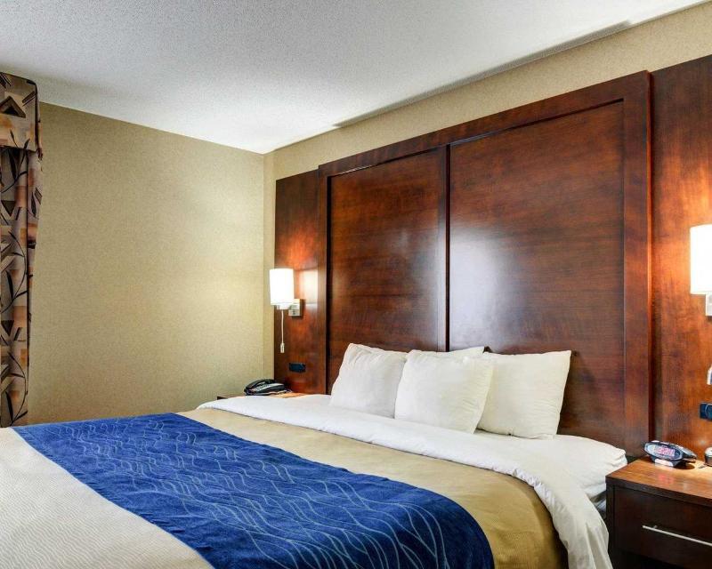 Comfort Inn & Suites near Hendrix College - Room - 10