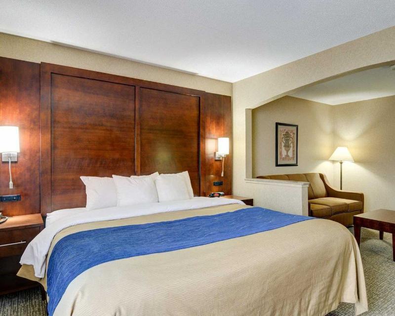 Comfort Inn & Suites near Hendrix College - Room - 9