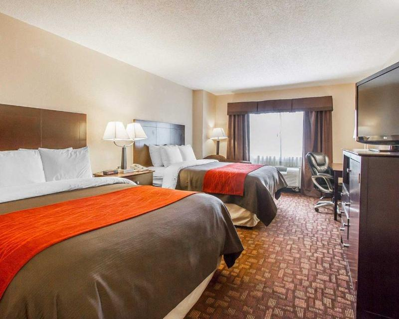 Comfort Inn & Suites - Room - 1