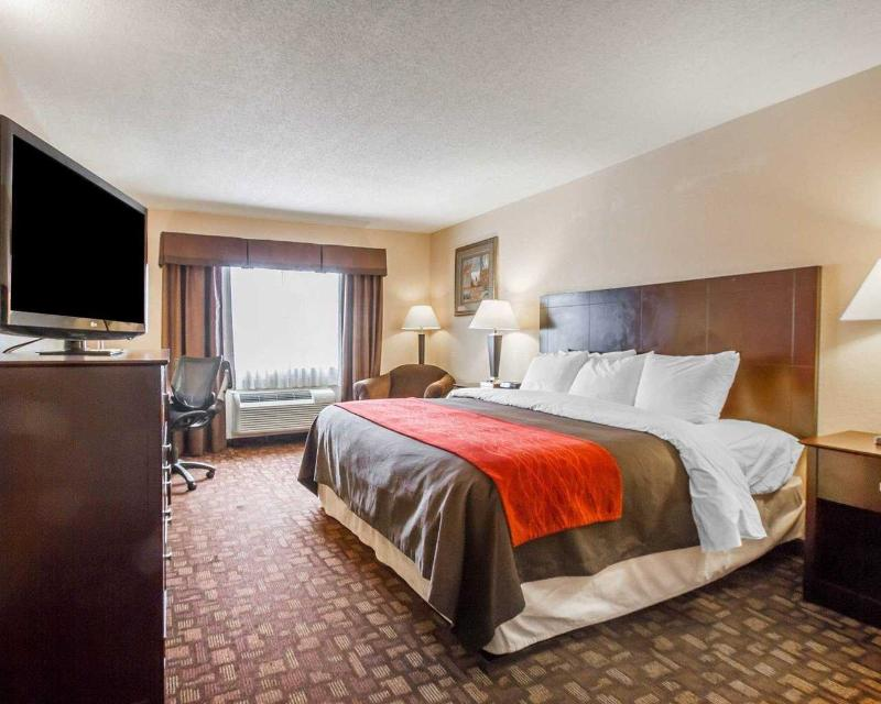 Comfort Inn & Suites - Room - 11