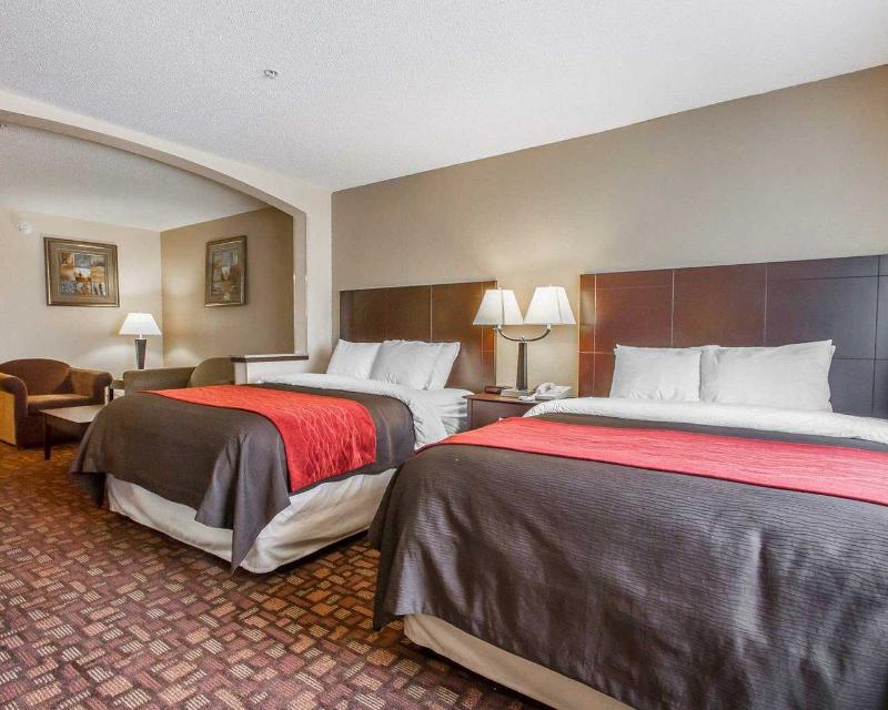 Comfort Inn & Suites - Room - 10
