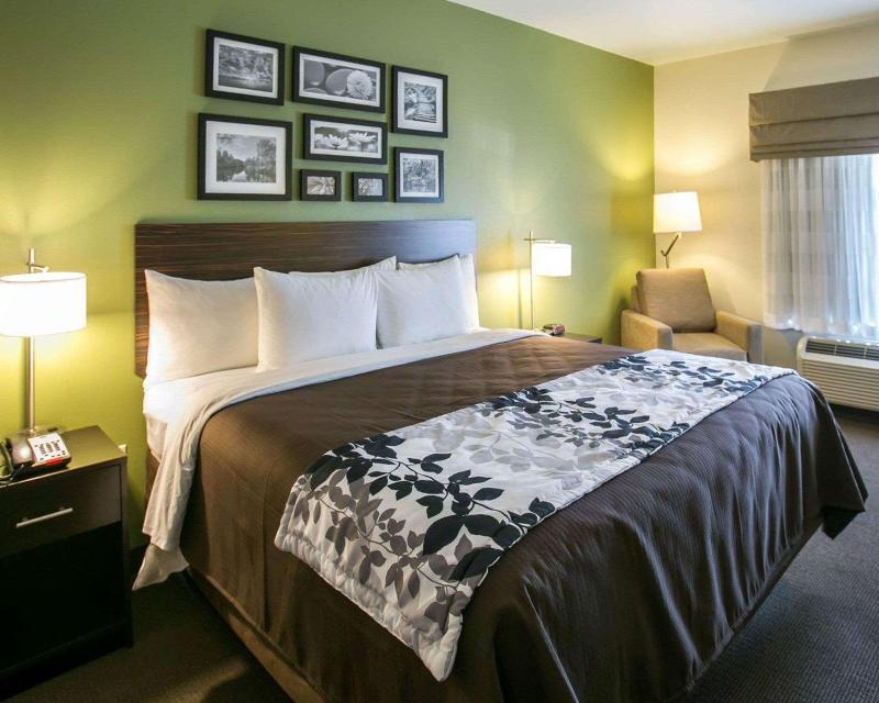 Sleep Inn & Suites Round Rock Area - Hotel - 2