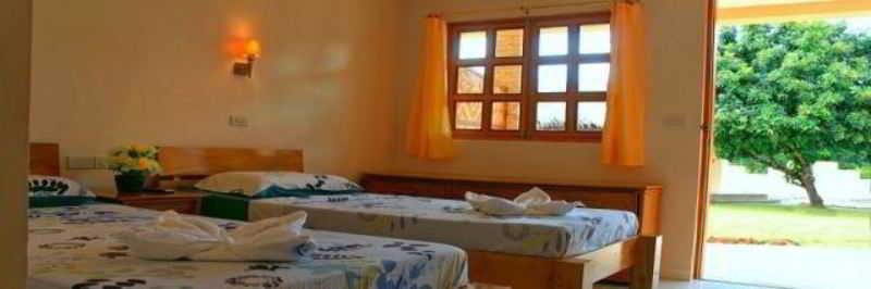 Room Alona 42 Resort