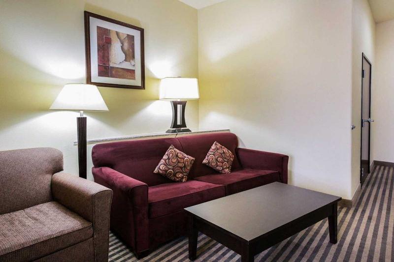 Comfort Suites North Pflugerville - General - 6