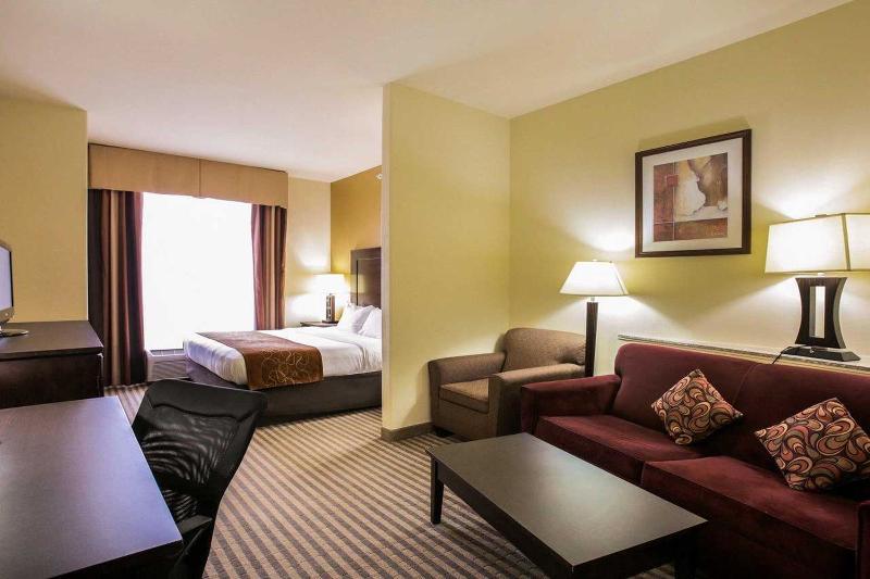 Comfort Suites North Pflugerville - Room - 9