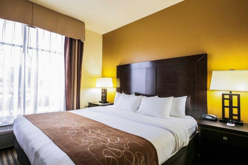 Comfort Suites North Pflugerville - Room - 7