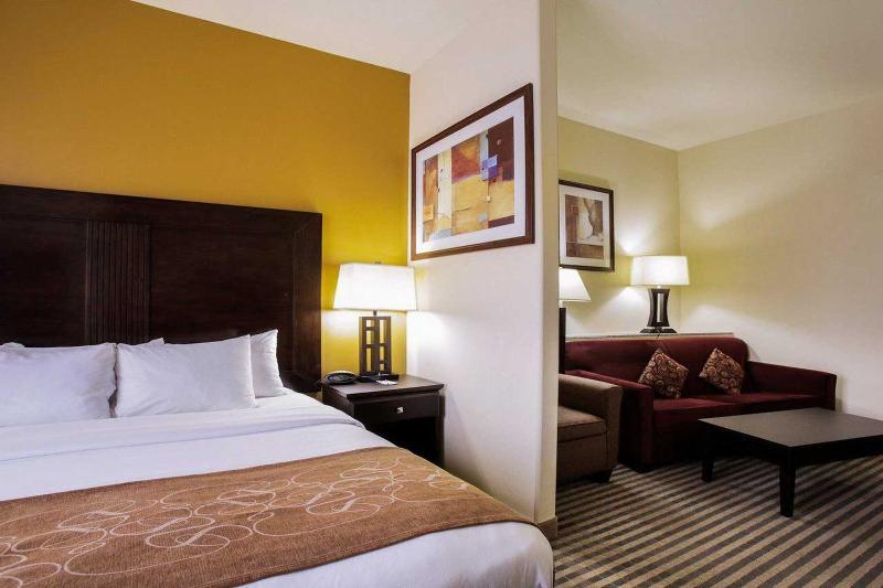 Comfort Suites North Pflugerville - Room - 8