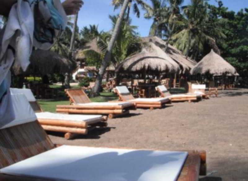 Bar Pura Vida Beach And Dive Resort