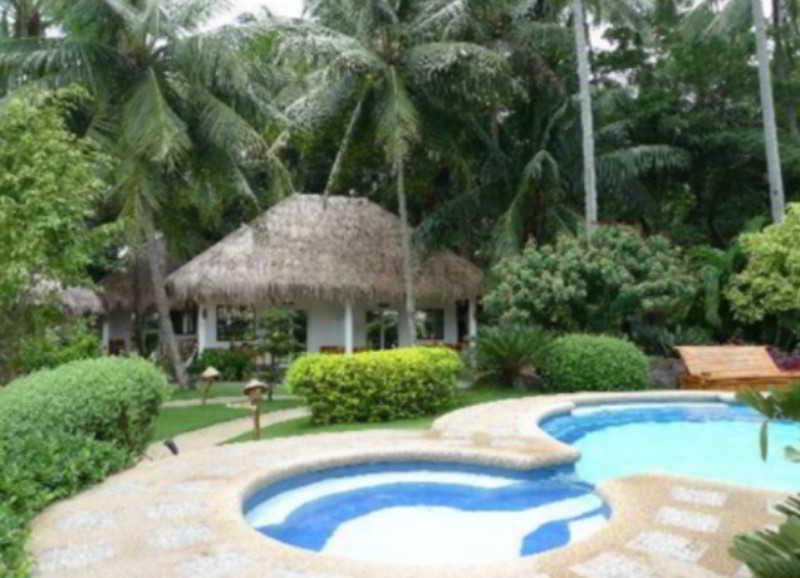 Pool Pura Vida Beach And Dive Resort
