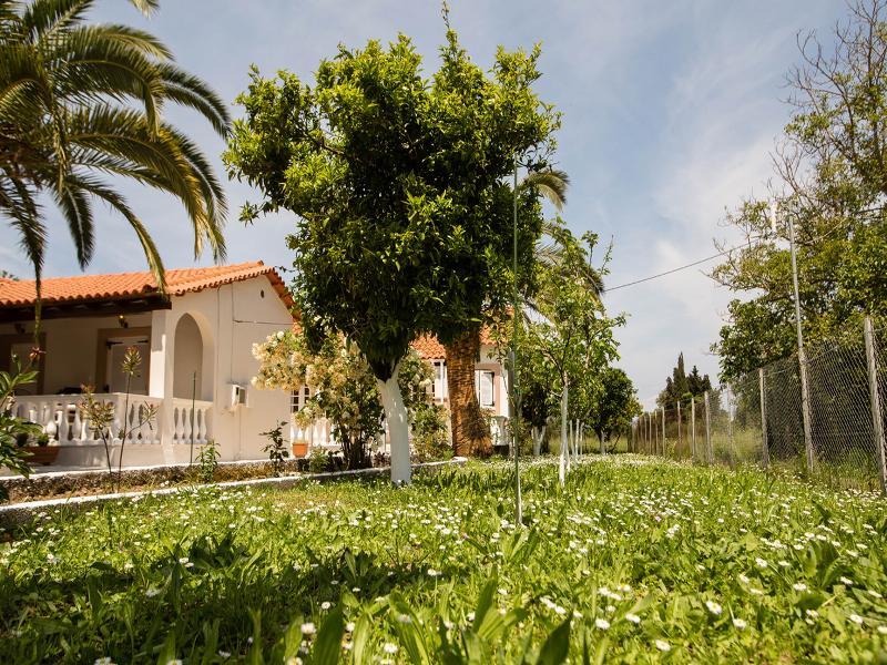 Terrace Paradise Village