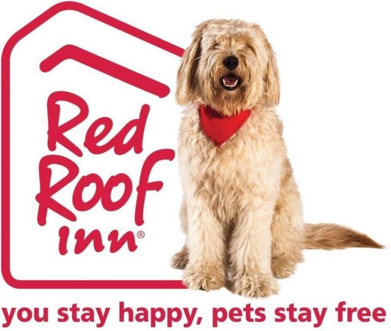 Habitaciones En El Hotel Red Roof Inn Austin Round Rock