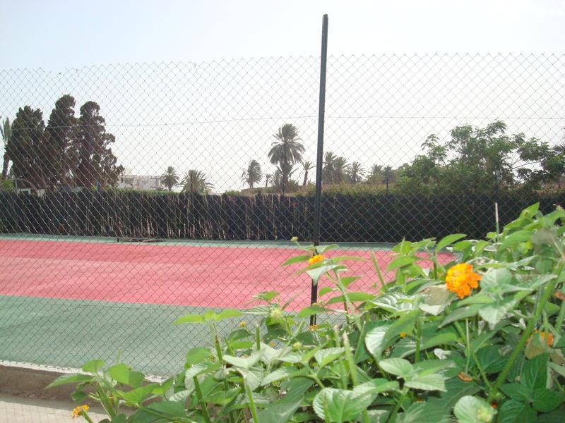 Sports and Entertainment Les Palmiers