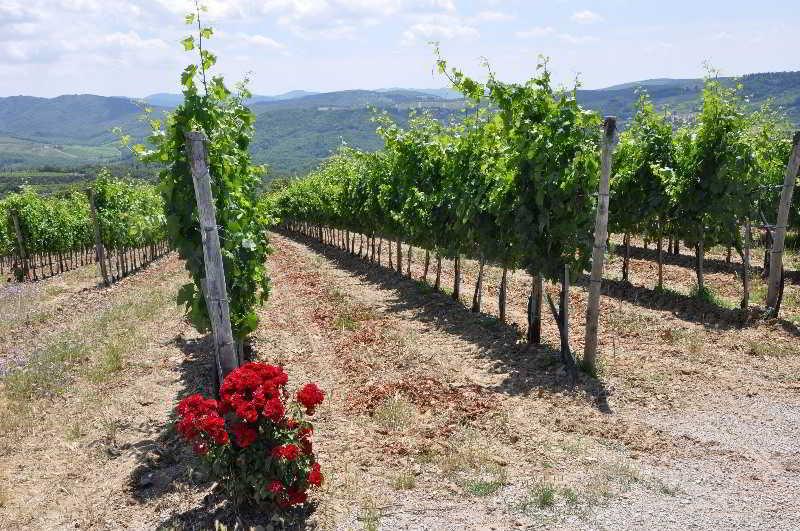 Радда-ин-Кьянти - Borgo Castelvecchi Residenza D'Epoca