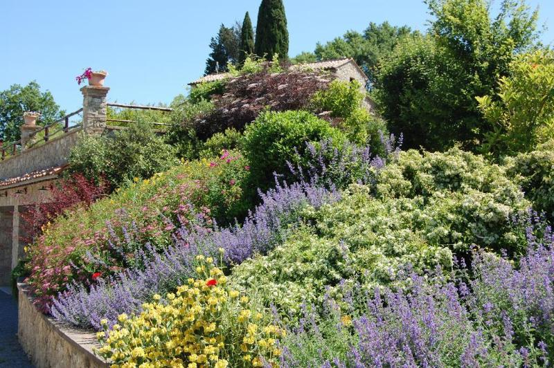 General view Il Borgo Del Grillo
