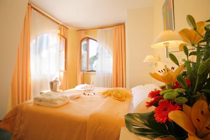 Hotel Ambiente Wellness & Spa   Karlovy Vary