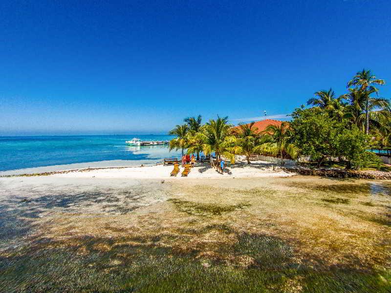 Beach Hatchet Caye Resort