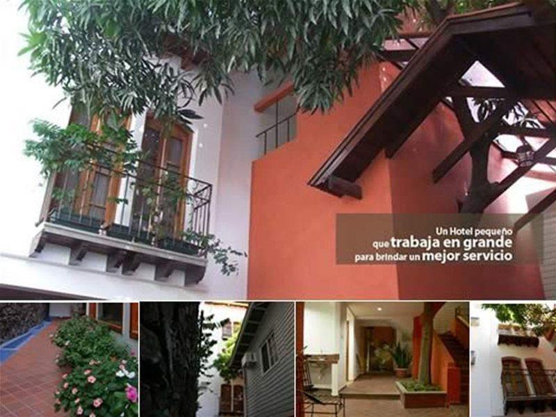 Casa del Arbol Centro - Hotel - 2