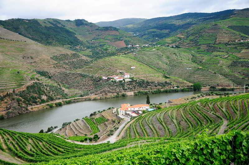 General view Rural Quinta Do Pégo