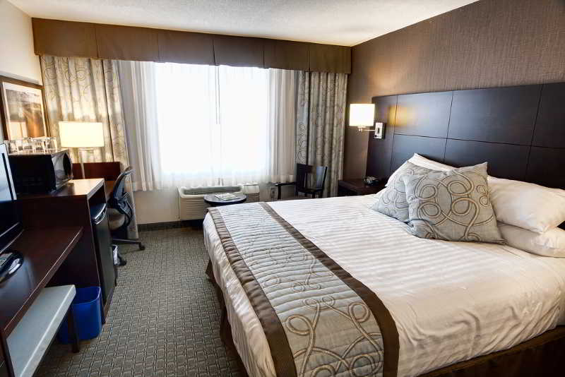 Room Rodd Royalty