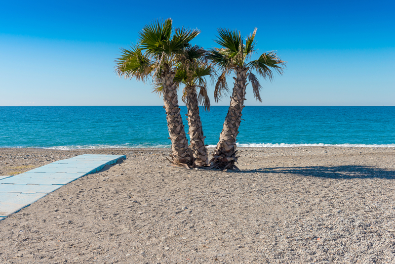 Beach La Caleta Bay