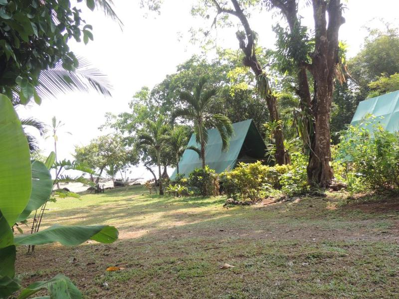 General view Corcovado Adventures Tent Camp