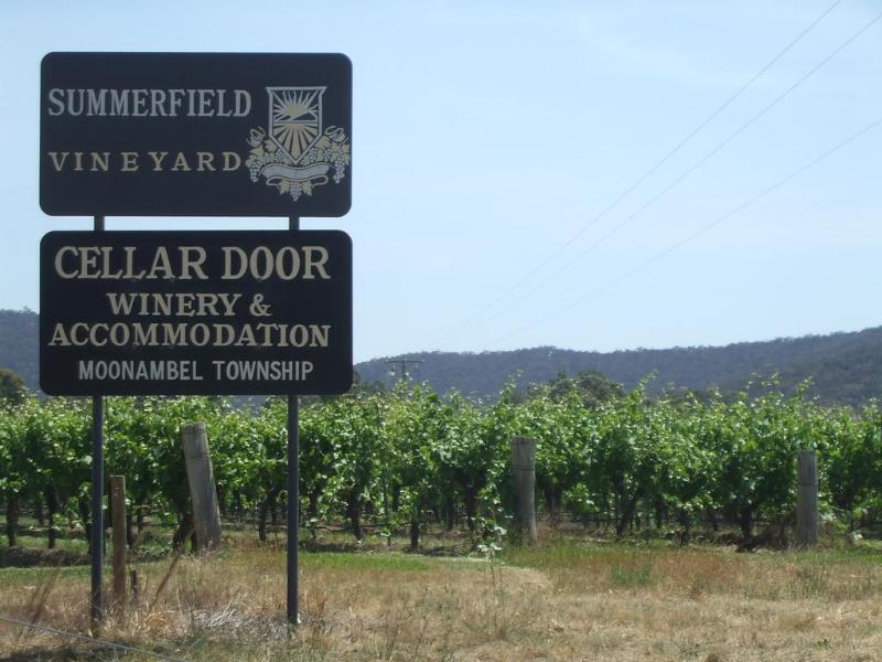 General view Summerfield Winery And Accommodation