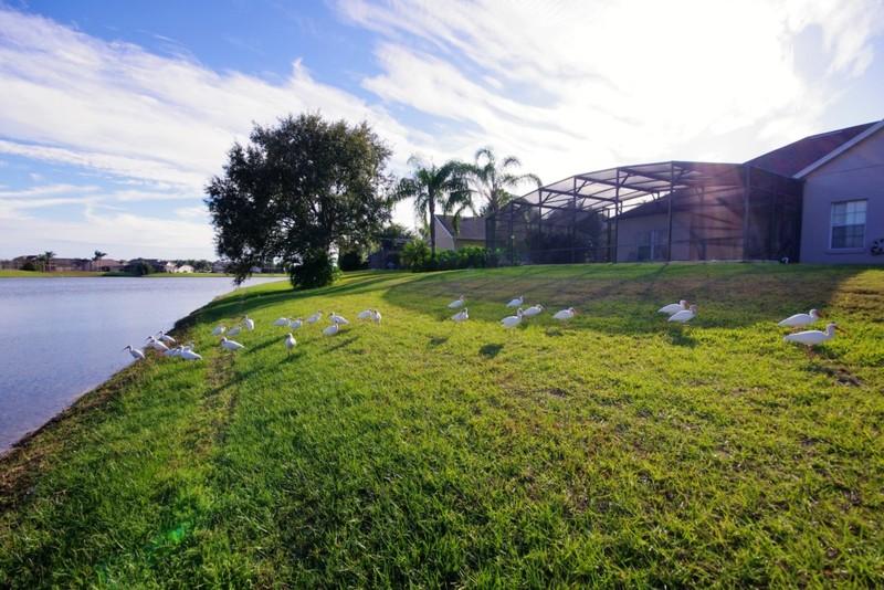 General view Lake Star Villa