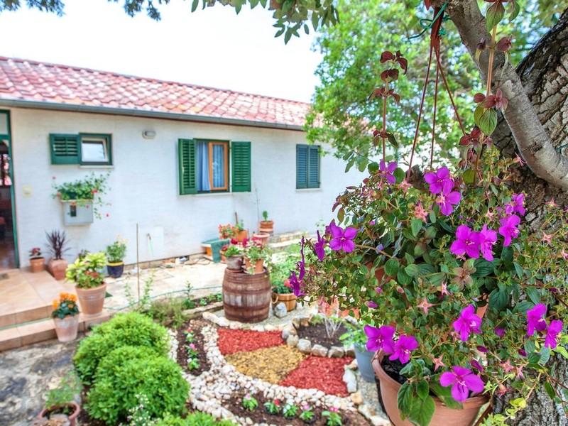 General view Apartments Irena