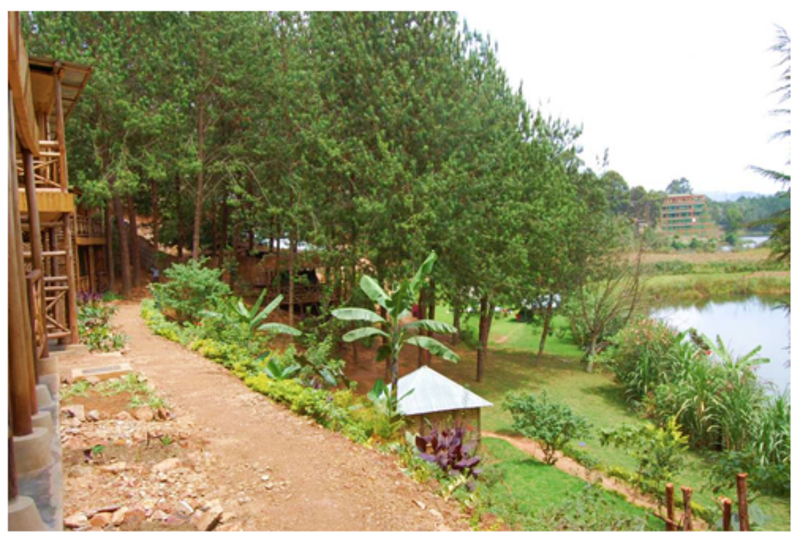 Terrace Bugombe Gateway Camp