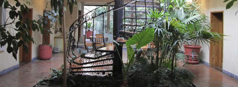 Terrace Casa Mágica
